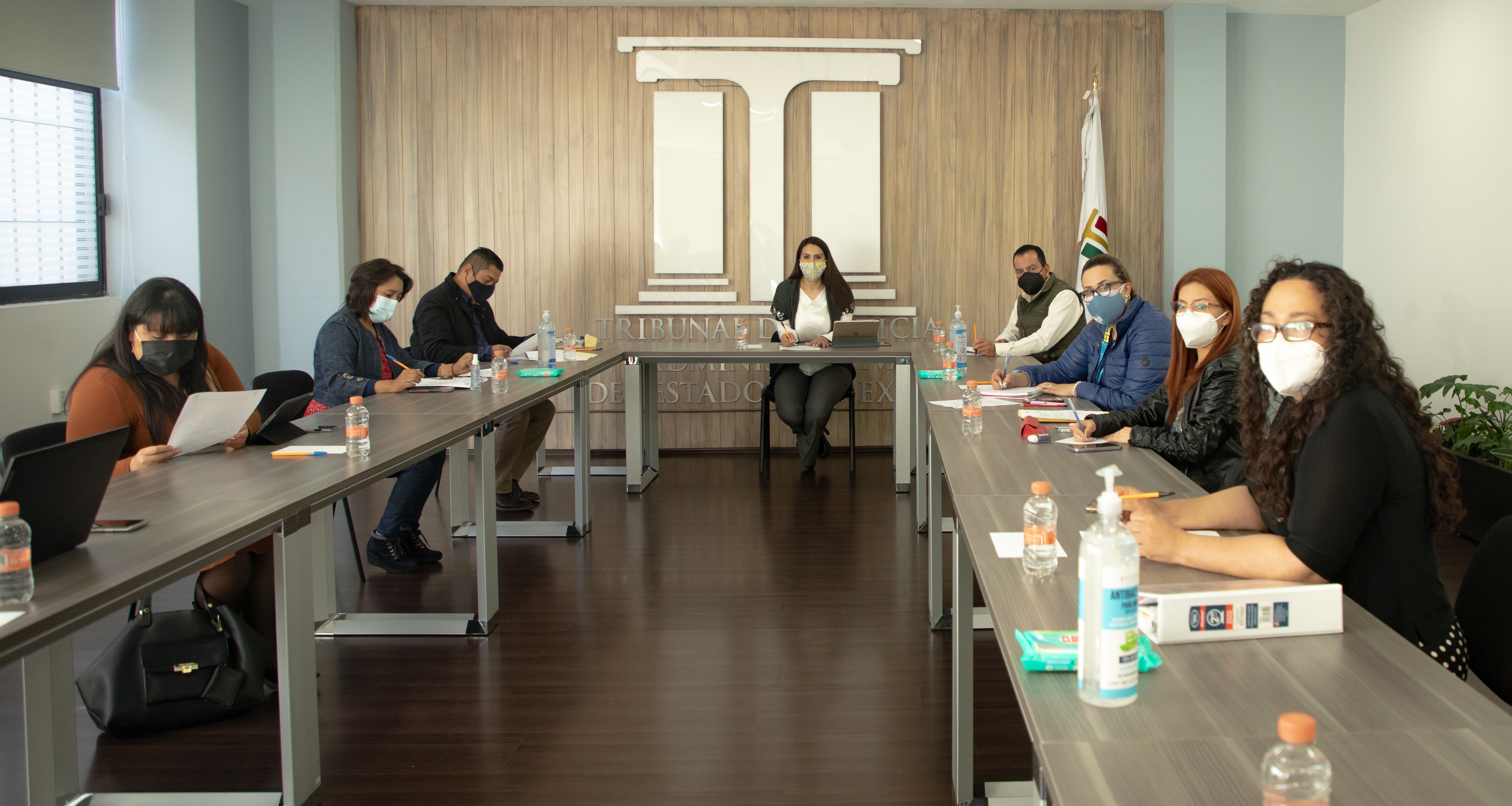 Reunión Mejoras Tribunal Electrónico